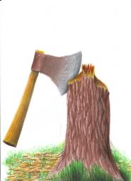 Uma machadinha cravada sobre o toco de uma árvore recém cortada. Lascas estão espalhadas pelo chão.